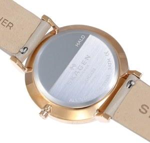 Часы SKAGEN SKW2489